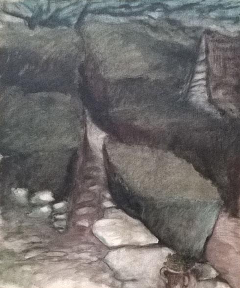 Les buis à la grange, 1990, 55x46 cm.