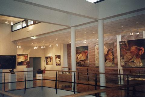Photo exposition regards de Gallinacés Gallerie Maurice-Gabriel François, Levallois-Perret 2001.